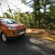Ford EcoSport Goa (14)