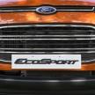 Ford EcoSport Goa (2)