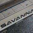 Bison Savanna 20