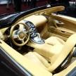 Bugatti Veyron Rembrandt-05