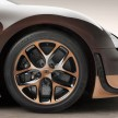 Bugatti Veyron Rembrandt-08