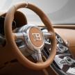 Bugatti Veyron Rembrandt-18
