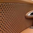 Bugatti Veyron Rembrandt-19