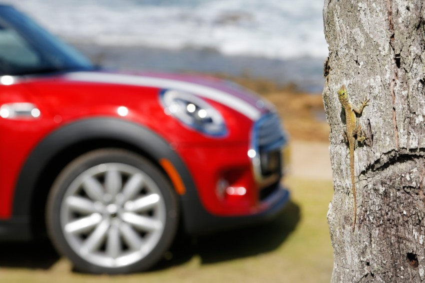 DRIVEN: F56 MINI Cooper, Cooper S in Puerto Rico Image #231819