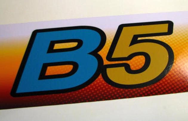 b5 bio