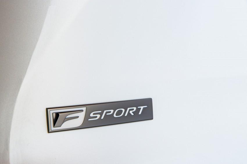 Lexus NX – full details revealed at Auto China 2014 Image #243180