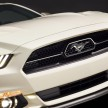 Mustang 50th Edition 12