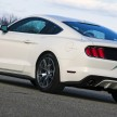 Mustang 50th Edition 18