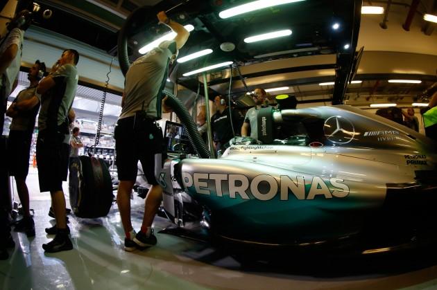 Lewis_Hamilton_F1_2014_Champion_10