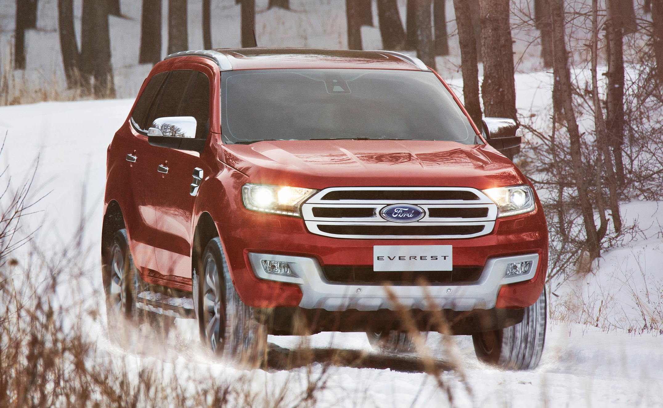 Ford Everest 2015 05