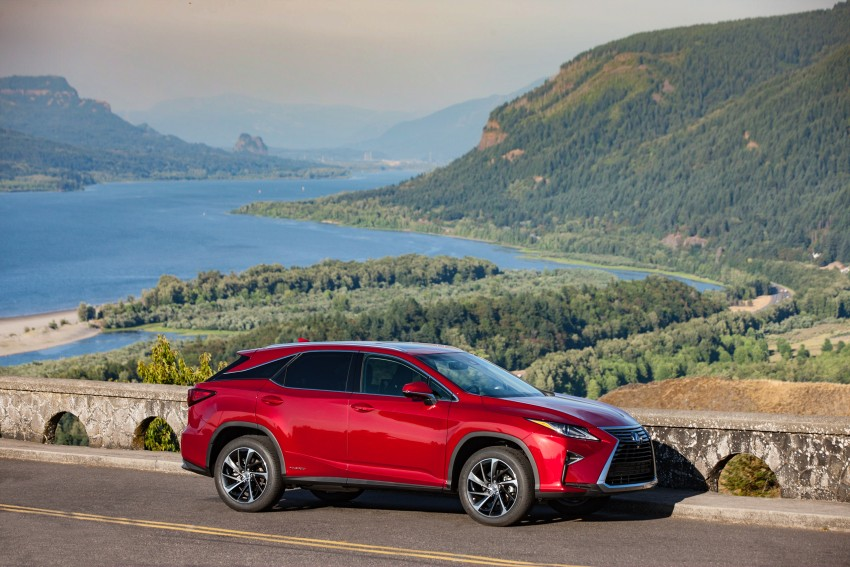 MEGA GALLERY: Lexus RX 350 and RX 450h variants Image #379553