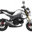 Honda-MSX125SF-Booster-White