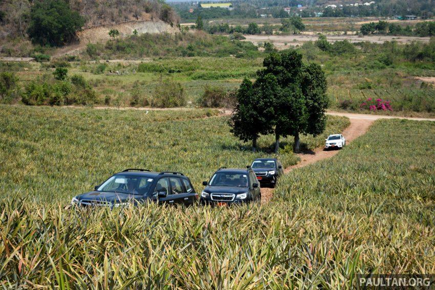 DRIVEN: Subaru Forester 2.0i-P – a worthy alternative? Image #480280