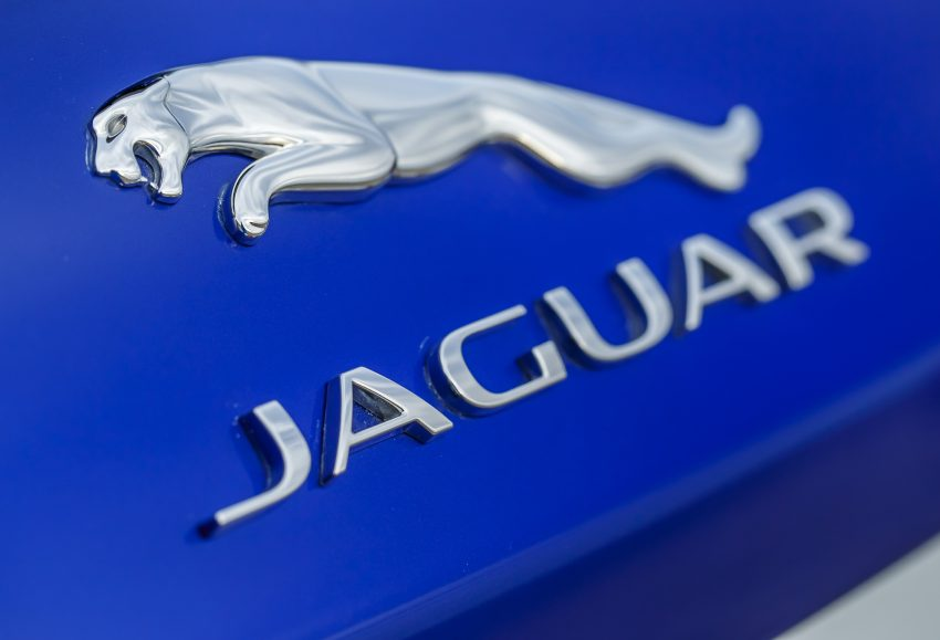 DRIVEN: Jaguar F-Pace – a go-anywhere Leaping Cat Image #496906
