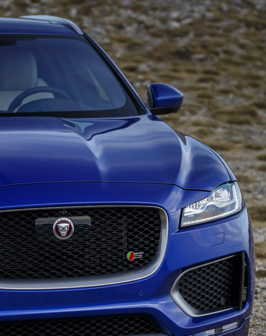 DRIVEN: Jaguar F-Pace – a go-anywhere Leaping Cat Image #496910