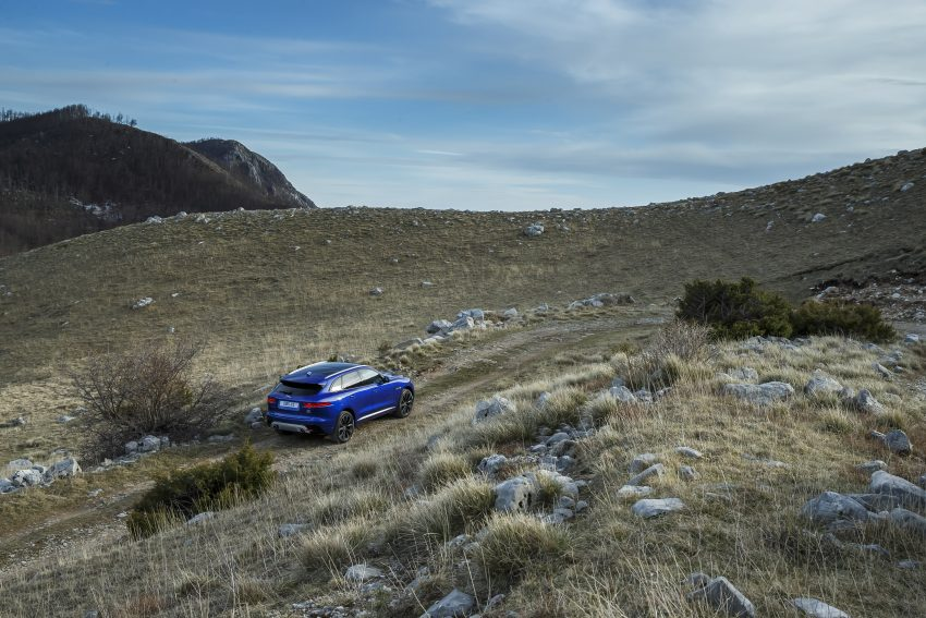 DRIVEN: Jaguar F-Pace – a go-anywhere Leaping Cat Image #496957