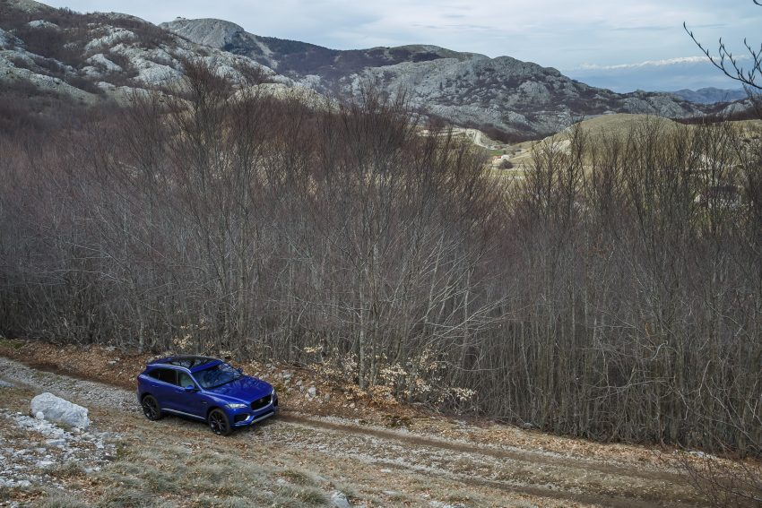 DRIVEN: Jaguar F-Pace – a go-anywhere Leaping Cat Image #496960