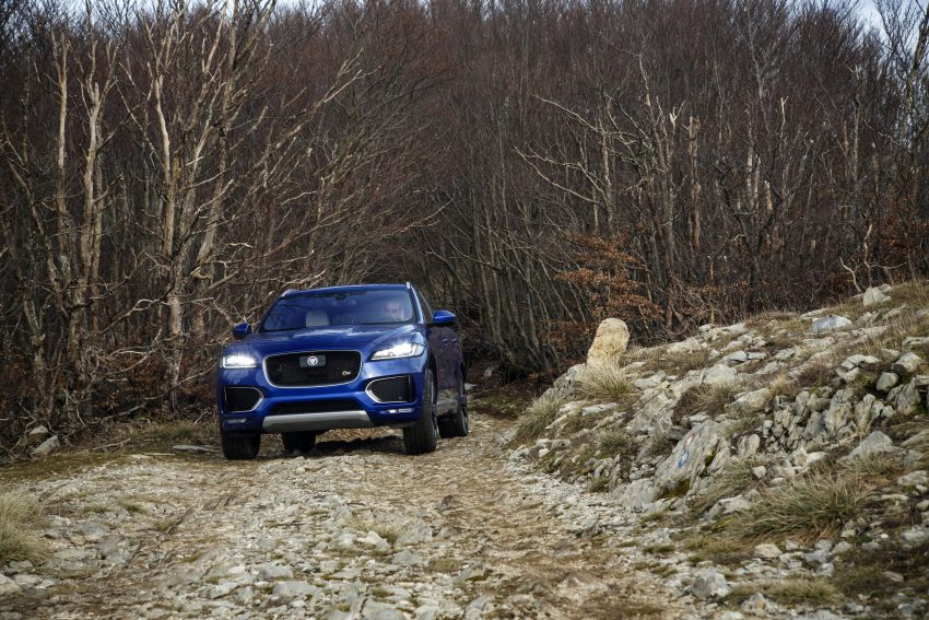 DRIVEN: Jaguar F-Pace – a go-anywhere Leaping Cat Image #496966