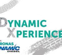 Dynamic-Xperience-artwork