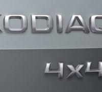 Skoda-Kodiaq-Logo