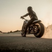 16-XDiavel_by_Roland_Sands_15