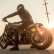 18-XDiavel_by_Roland_Sands_13