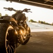 22-XDiavel_by_Roland_Sands_09
