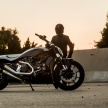 7-XDiavel_by_Roland_Sands_24