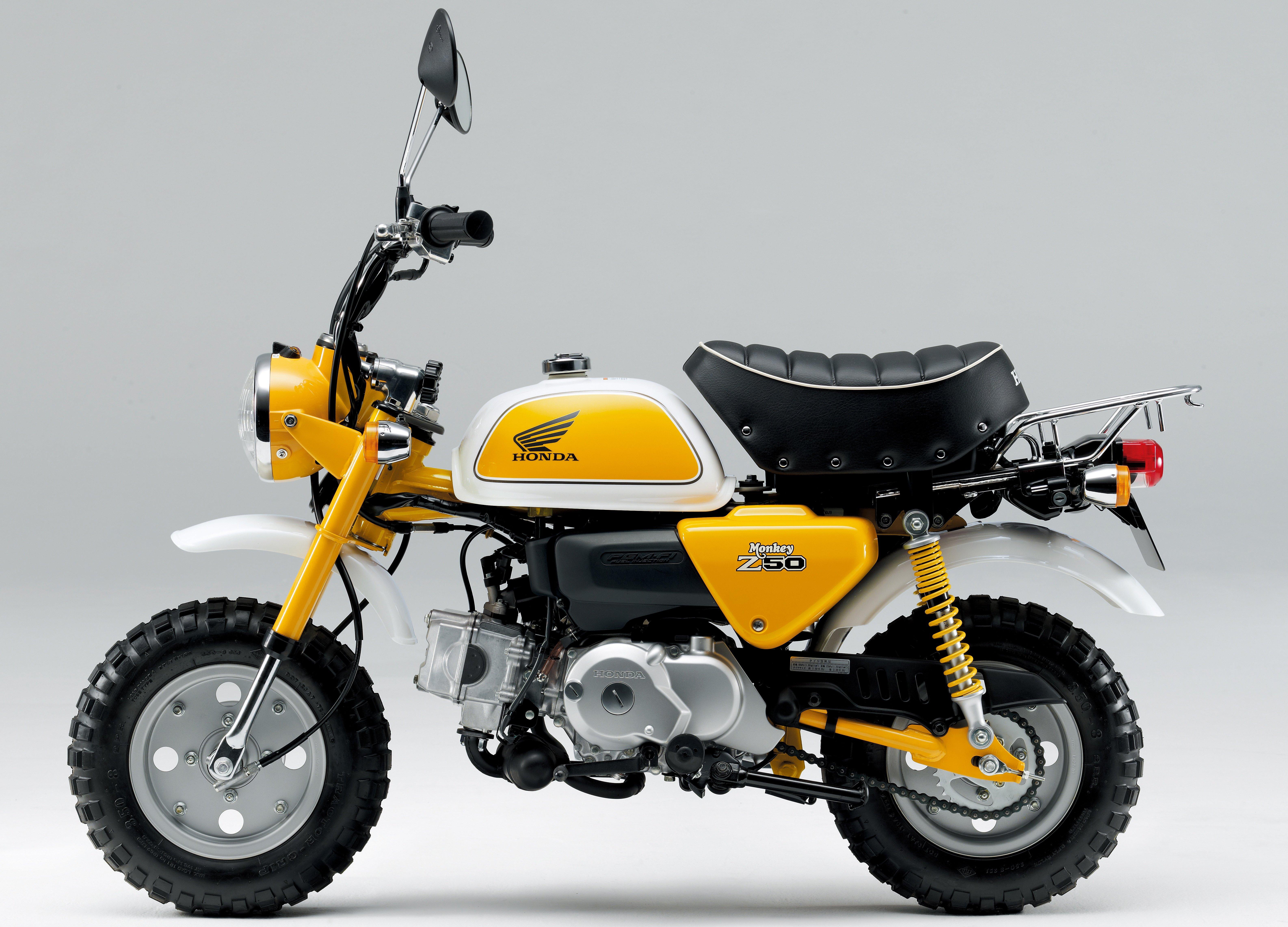 honda monkey msx125sf based mini bike to return paul. Black Bedroom Furniture Sets. Home Design Ideas