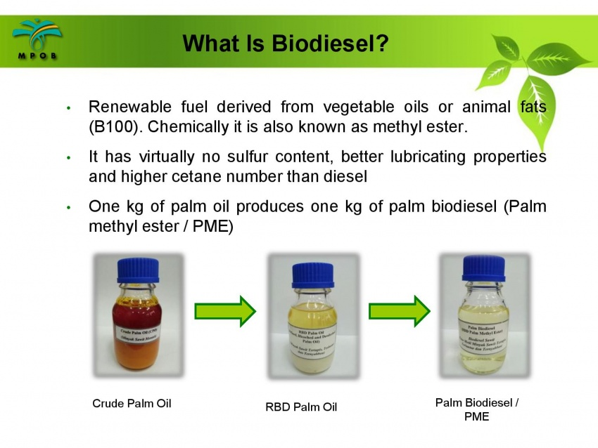B10 biodiesel implementation in Malaysia – we speak with MPOB's biodiesel researcher, Dr Harrison Lau Image #625000