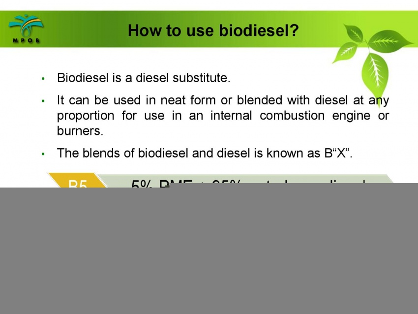 B10 biodiesel implementation in Malaysia – we speak with MPOB's biodiesel researcher, Dr Harrison Lau Image #624989