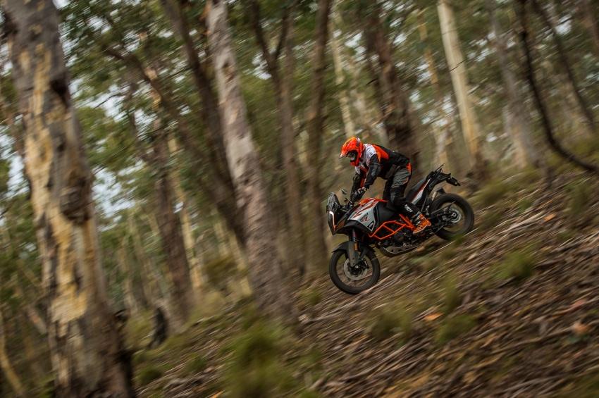 TUNGGANG UJI: KTM Super Adventure 1290 R bukan setakat mampu redah cabaran, malah mudah dikendali Image #661106