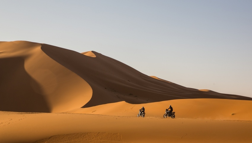 Triumph Tiger Tramontana to race in Pan-African rally Image #721588