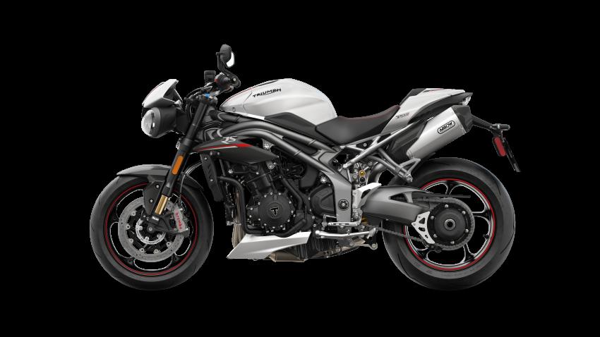 2018 Triumph Speed Triple 1050 – 150 PS, 117 Nm Image #775574