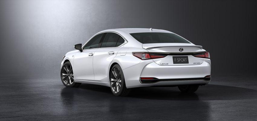 2019 Lexus ES debuts in Beijing – TNGA platform, hybrid and petrol powertrains, F Sport package Image #810847