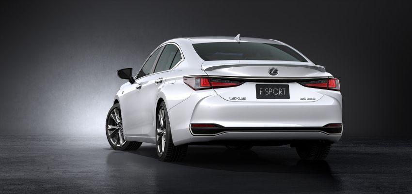 2019 Lexus ES debuts in Beijing – TNGA platform, hybrid and petrol powertrains, F Sport package Image #810852
