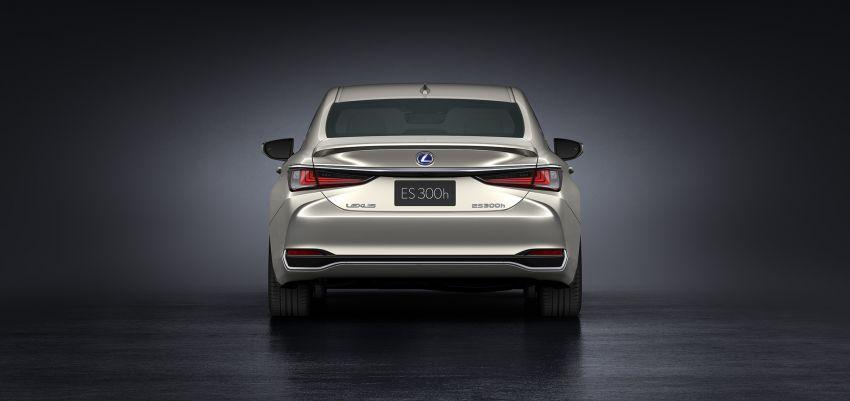 2019 Lexus ES debuts in Beijing – TNGA platform, hybrid and petrol powertrains, F Sport package Image #810794
