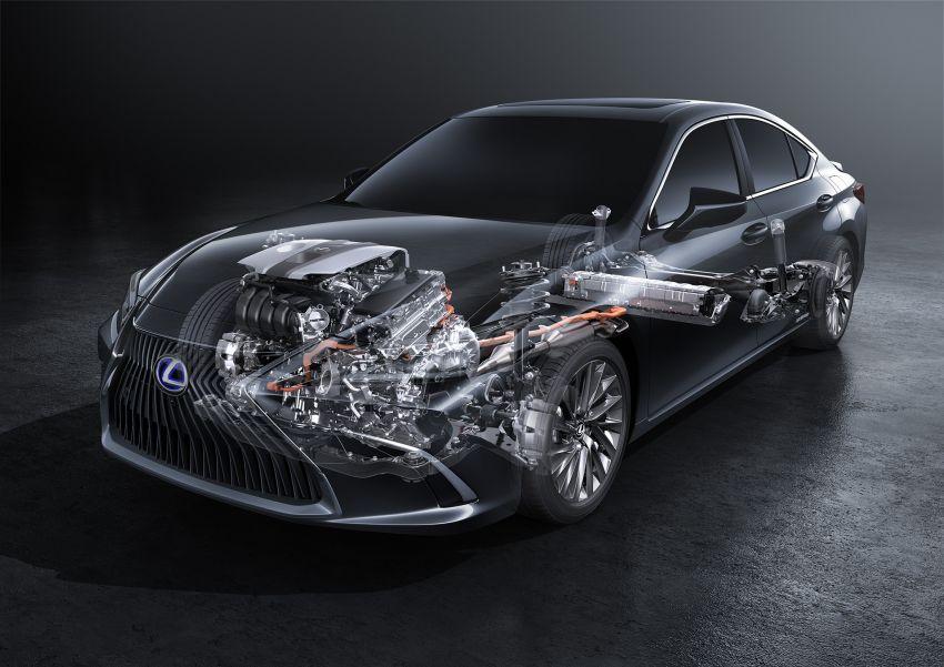 2019 Lexus ES debuts in Beijing – TNGA platform, hybrid and petrol powertrains, F Sport package Image #810805