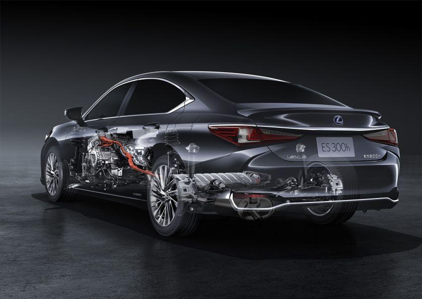 2019 Lexus ES debuts in Beijing – TNGA platform, hybrid and petrol powertrains, F Sport package Image #810807