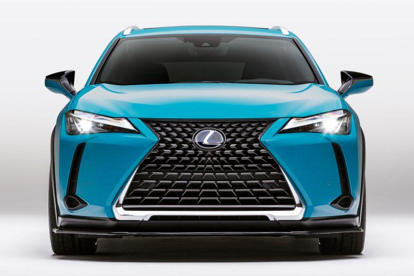 Lexus LC Inspiration Concept & custom UX250h debut Image #854245