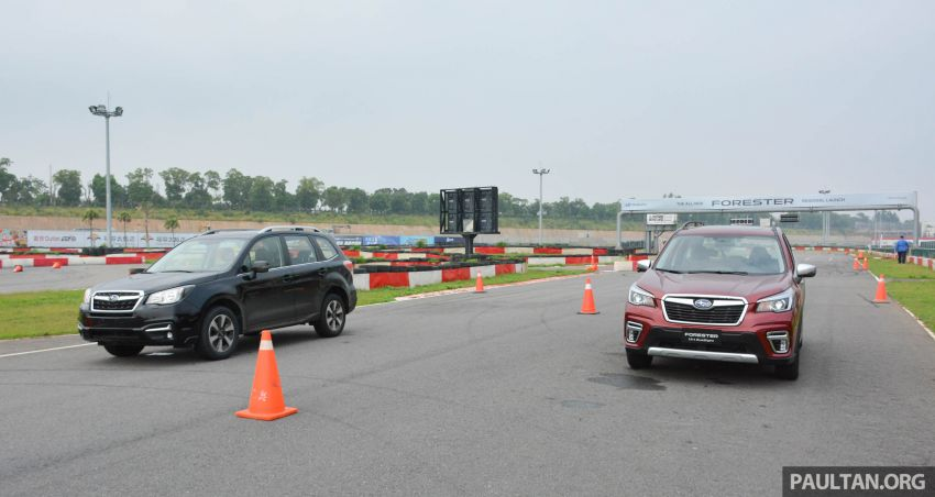 FIRST DRIVE: 2019 Subaru Forester sampled in Taiwan Image #850506
