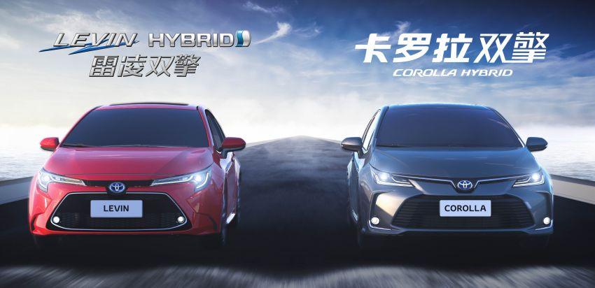 2019 Toyota Corolla sedan – 12th-gen makes its debut Image #889505