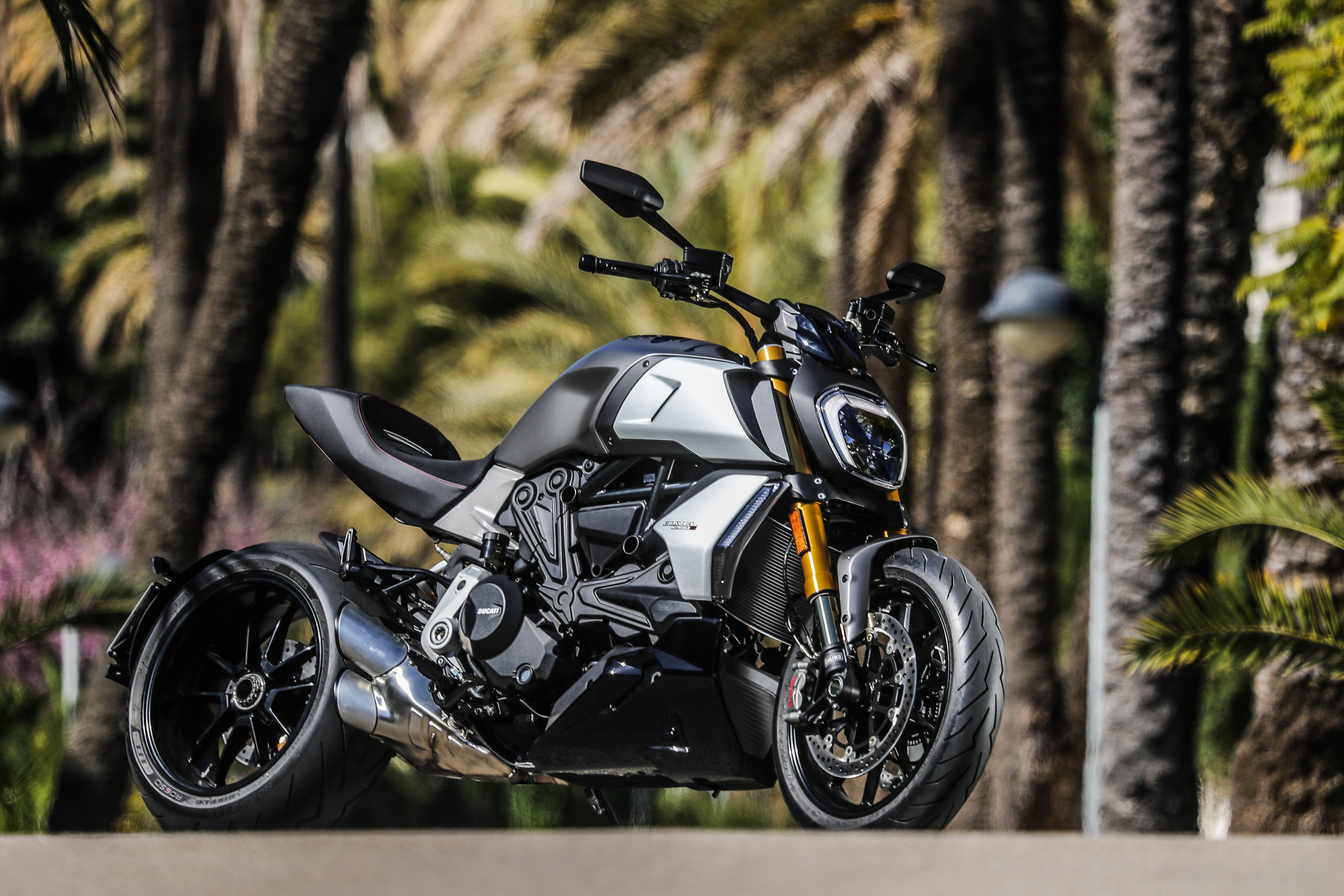 Ducati Diavel 1260S Review: A Muscle Bike Goes to Crossfit
