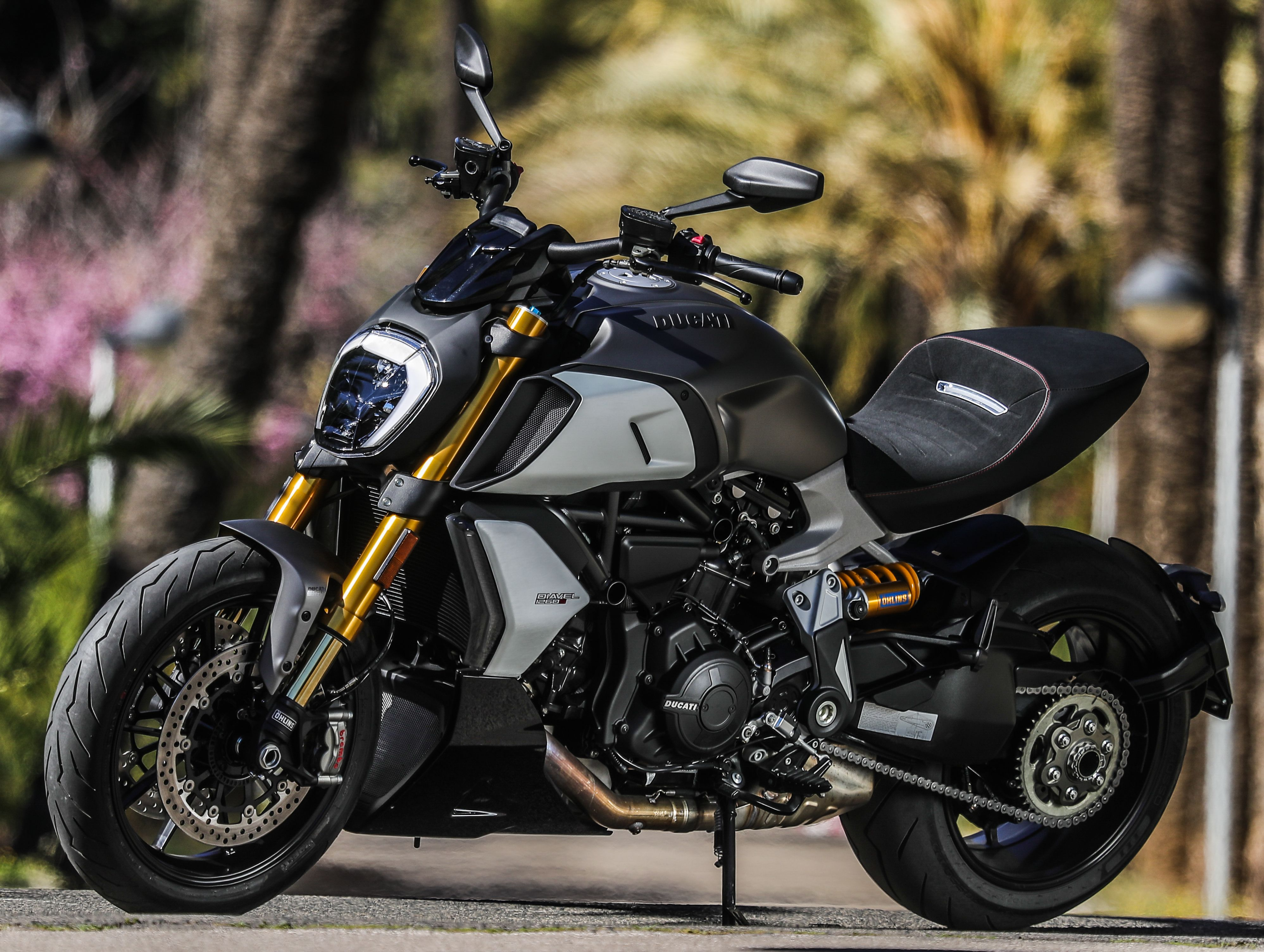 2019 Ducati Diavel 1260S Guide • Total Motorcycle