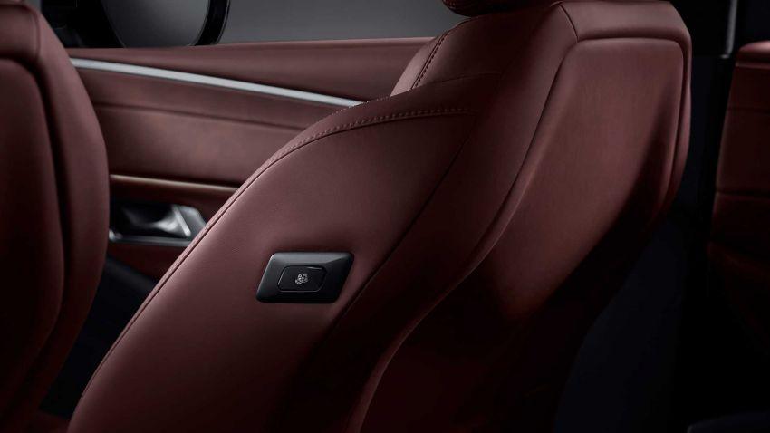 DS9 flagship sedan revealed – global plug-in hybrid Image #1086464
