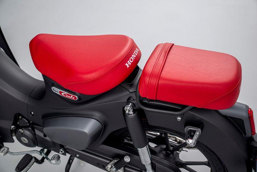 2022 Honda Super Cub 125 – Euro 5 compliance, ABS Image #1310650