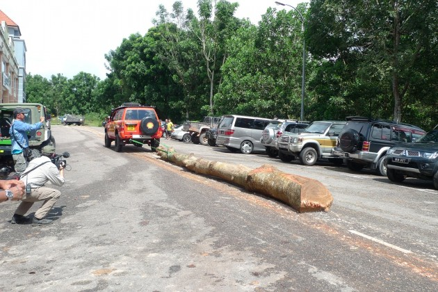 Demonstrating the Nissan Patrol's engine's load pulling capabilities with a log