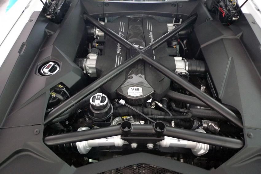 DRIVEN: Lamborghini Aventador LP700-4 in Sepang Image #70540