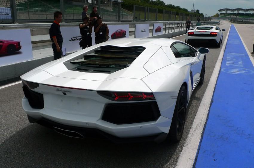 DRIVEN: Lamborghini Aventador LP700-4 in Sepang Image #70570