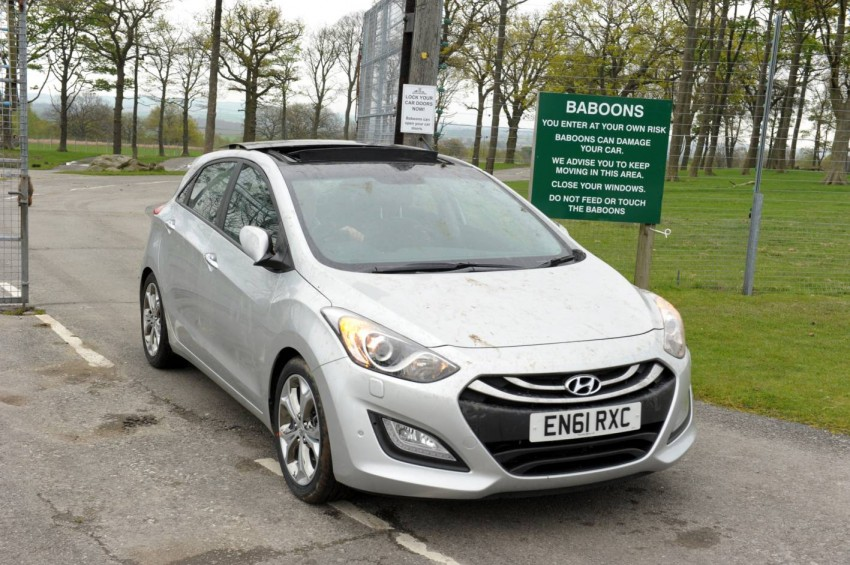 Hyundai i30, besieged by primates, goes ape for 10 hours Image #106595